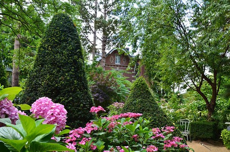 Agapanthe gardens