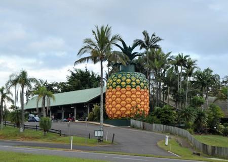 The Big Pineapple on the Sunshine Coast