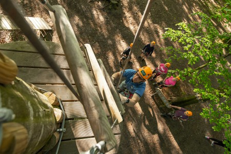 Camp Adventure-TheTreetop Experience- Observation Tower