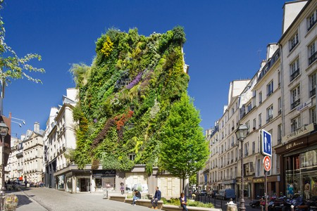 L'Oasis d'Aboukir, a new vertical garden on the side of a residential building in Paris by Patrick Blanc
