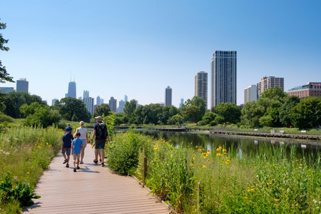 The Best Walking Tours in Chicago