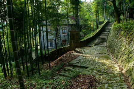 House in bamboo grove, Moganshan, Zhejiang, China.