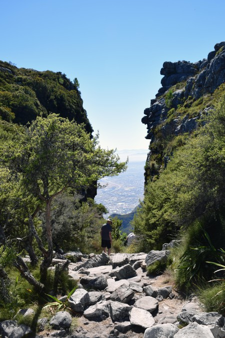 Hiking Table Mountain, Cape Town.