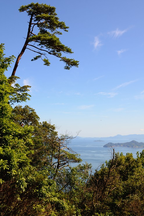View from Mt. Misen at Miyajima, Japan.