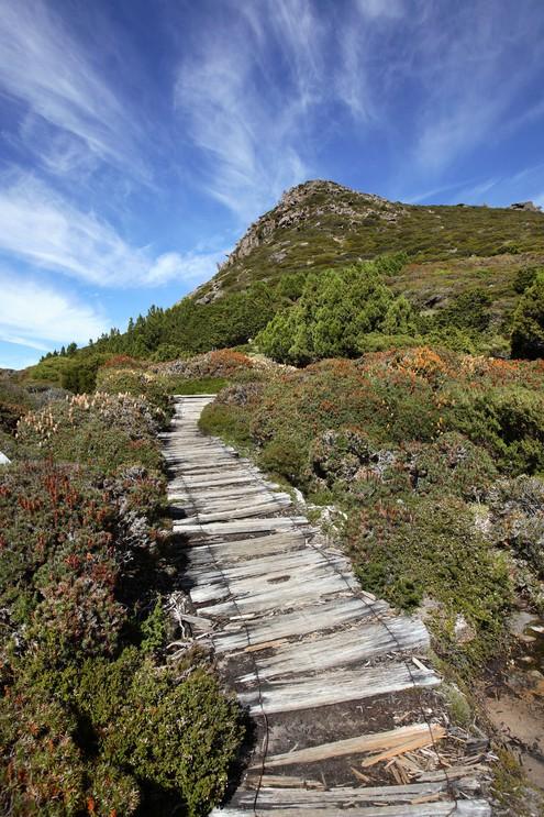 The Overland Track, Tasmania, Australia.