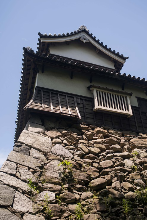 Ruins of Fukuoka Castle, Japan.