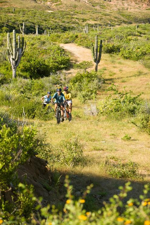 Mountain biking the trails with Natur Adventure, Sierra de la Laguna, Parque Punta San Cristobal, Baja, Mexico. (MR)