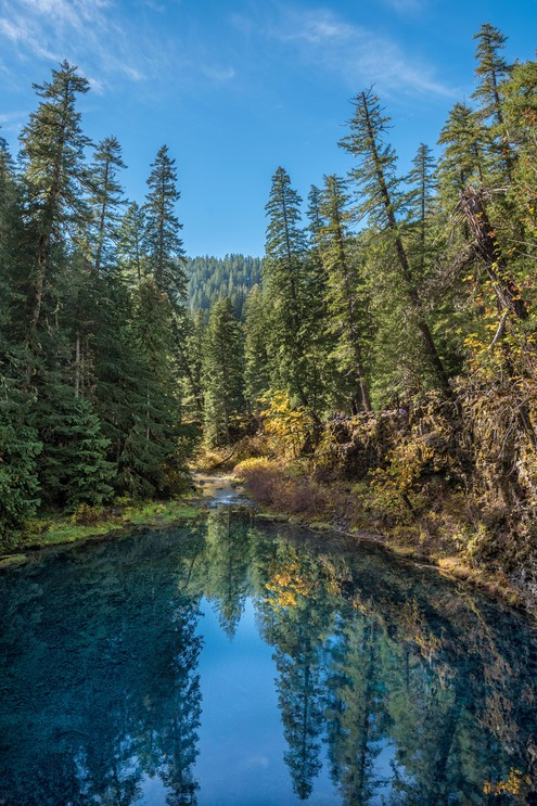 Tamolitch Blue Pool on the McKenzie River, Willamette National Forest, Oregon.