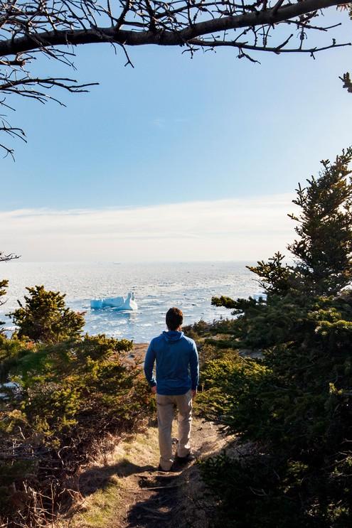 Hiker on trail of rugged cliffs in Crow Head, Twillingate, Newfoundland, Canada