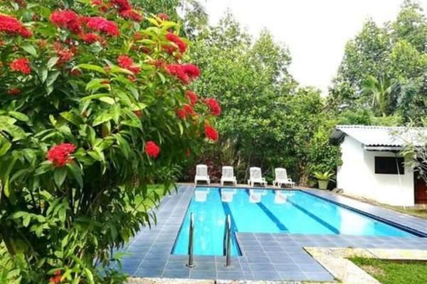 Indoor/Outdoor Pool