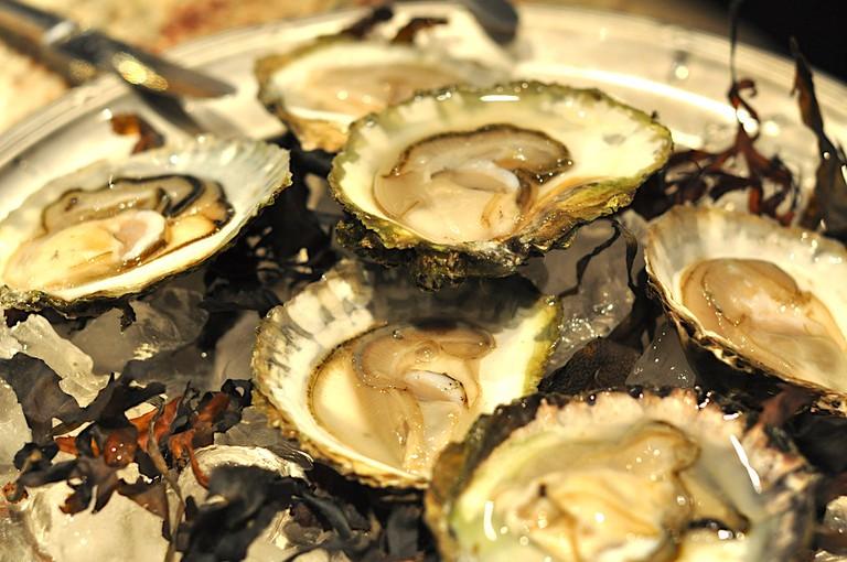 Oysters | © Charlotta Wasteson/Flickr