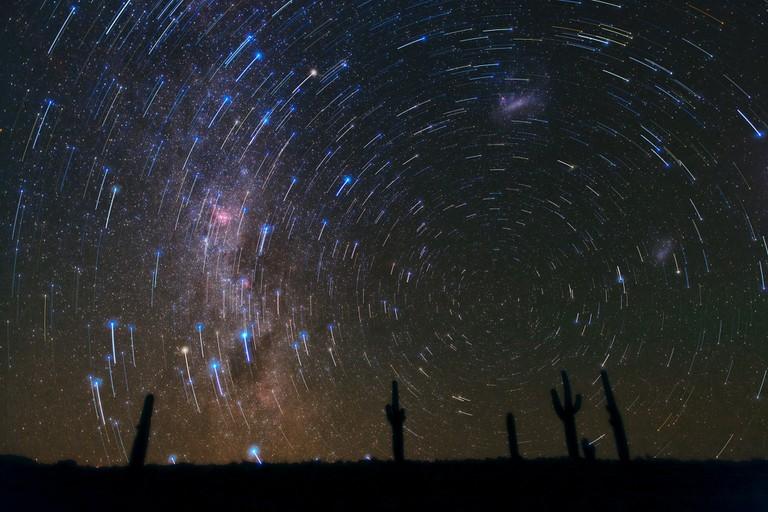 Star Trails over Atacama Desert Cacti | © European Southern Observatory / Flickr