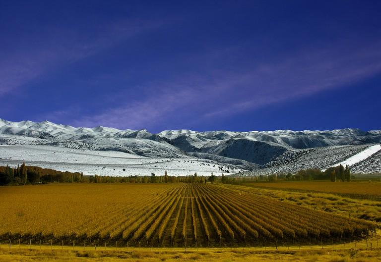 Mendoza | © xxxx / Flickr