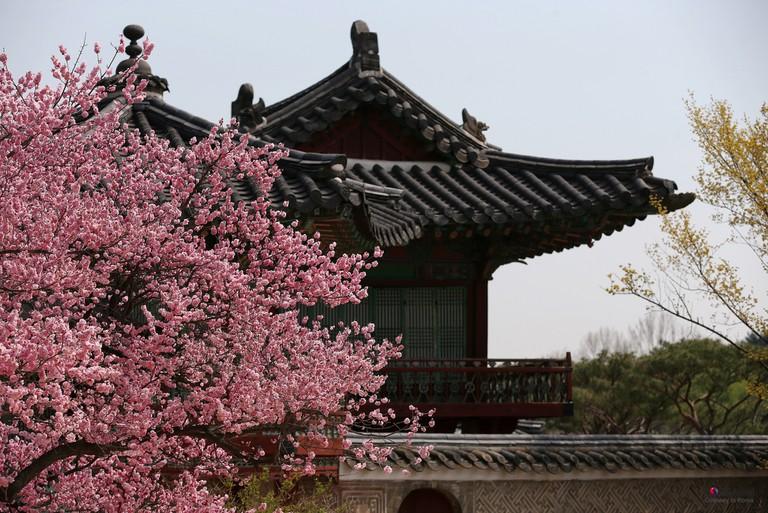 Changdeokgung Sarayı   © Kore Cumhuriyeti / Flickr