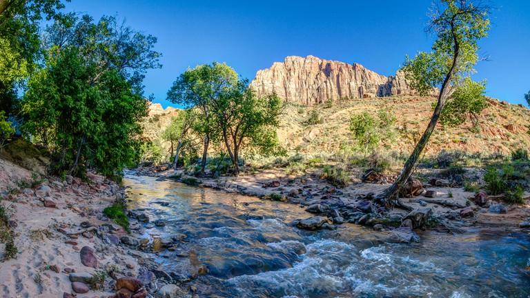 Zion National Park, Springdale   ©Steven dosRemedios/Flickr
