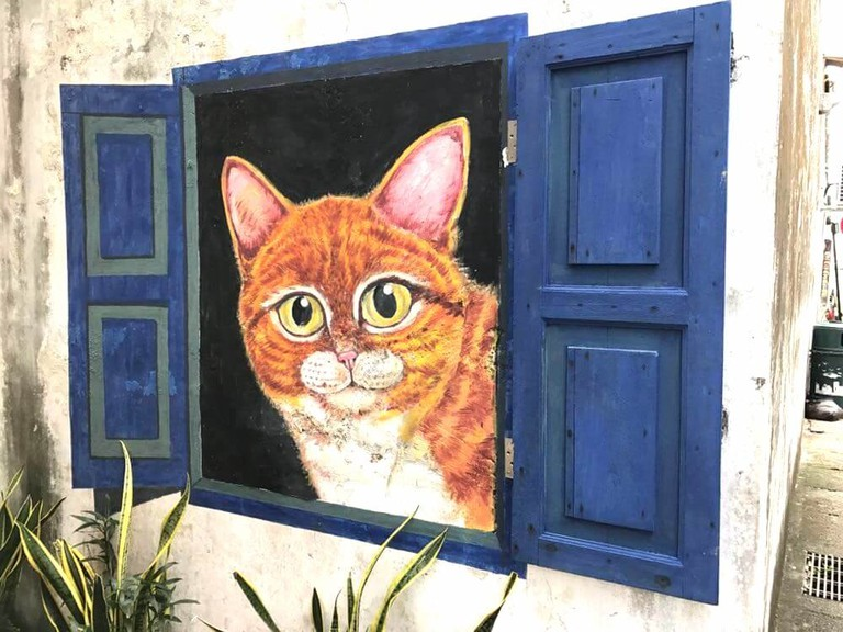 Culture Trip - Penang street art - window cat