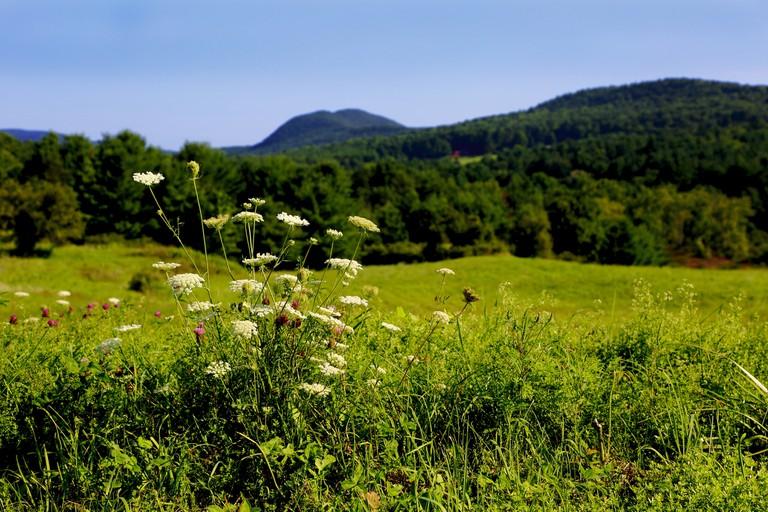 Great Barrington, WA| ©Masstravel/Flickr