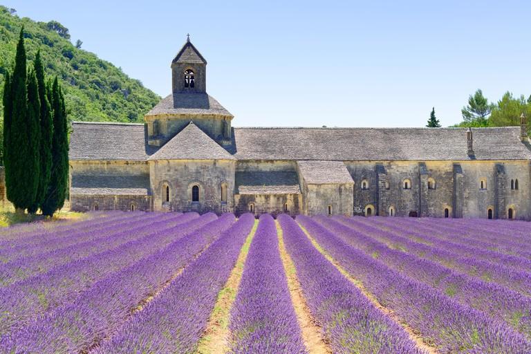 Abbey of Senanque, Gordes, France