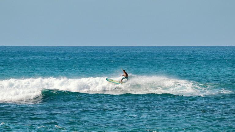 Surfing in Haleiwa  © Robert Lindsall/Flickr