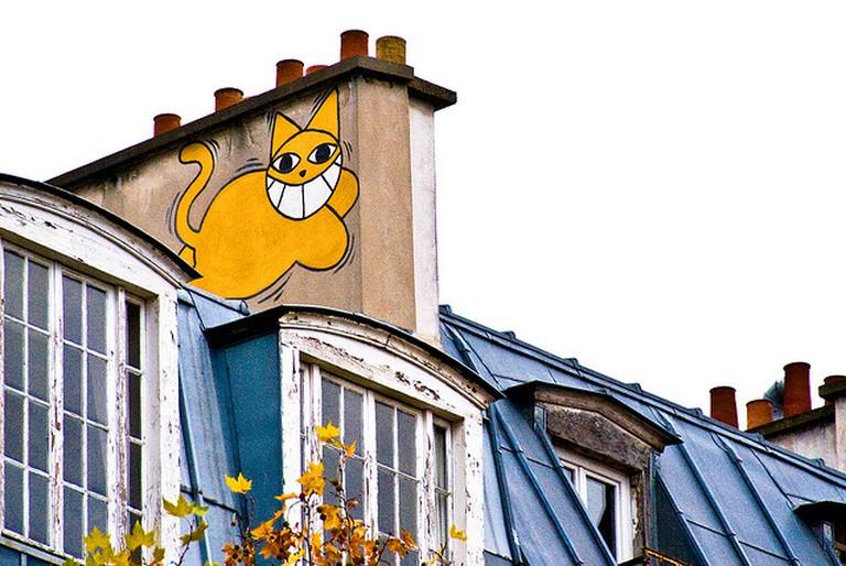 Monsieur Chat | © Damien Roué/ Flickr