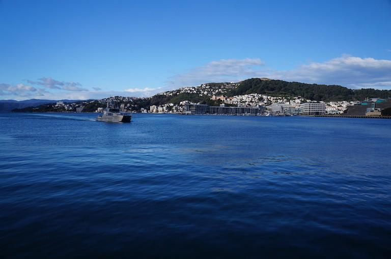 Te Whanganui-a-Tara (Wellington Harbour)   © Roxanne de Bruyn, Faraway Worlds