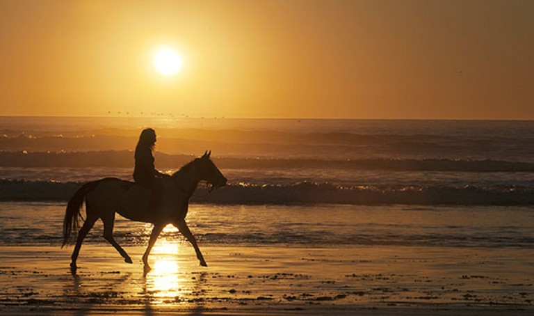 Horse riding on the beach at sunset   © Maureen Clark/Flickr