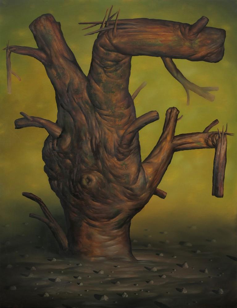 Tree   © Seth Alverson