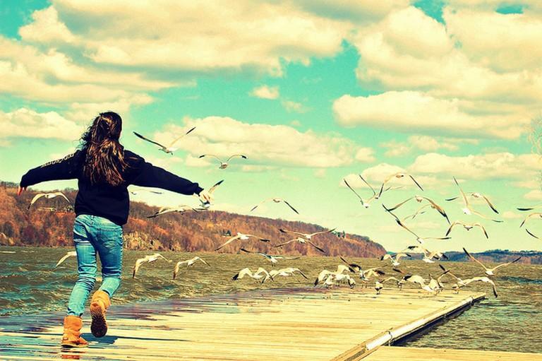 Fly Away | © Ben Rea/Flickr