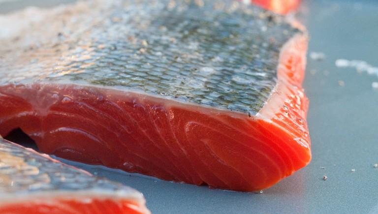 Salmon   © Ernesto Andrade/Flickr