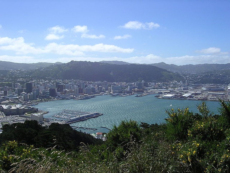 A photo of Wellington taken from the lookout point at Mount Victoria   © Mandy Simpson/Wikicommons