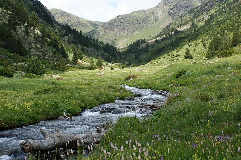 La Rabassa-Rialb, Parc Natural de Sorteny, Andorra | © Ferran Llorens/Flickr