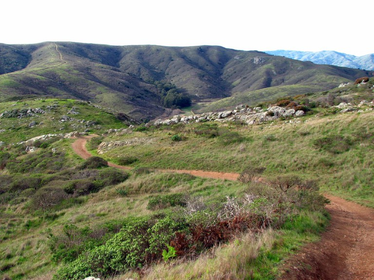 The Old Spring Trail in Marin Headlands | © David Berry_Flickr