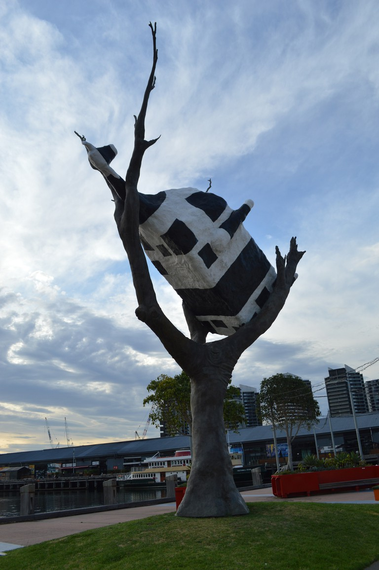 Cow Up A Tree © Sue Roe Lim