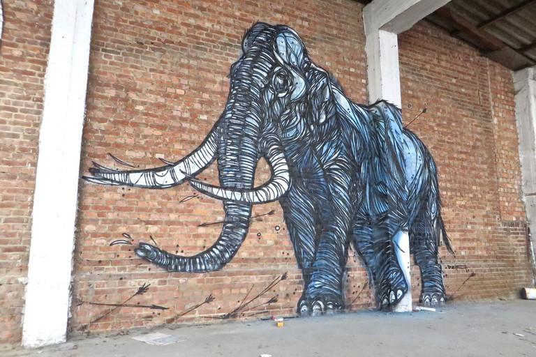 The Mammoth | Courtesy of Dzia