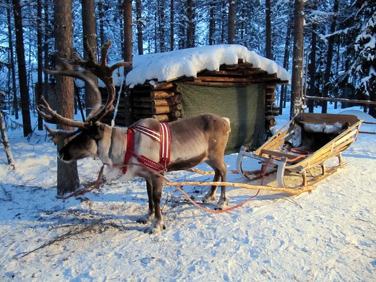 Reindeer Sleigh | © Heather Sunderland/Flickr