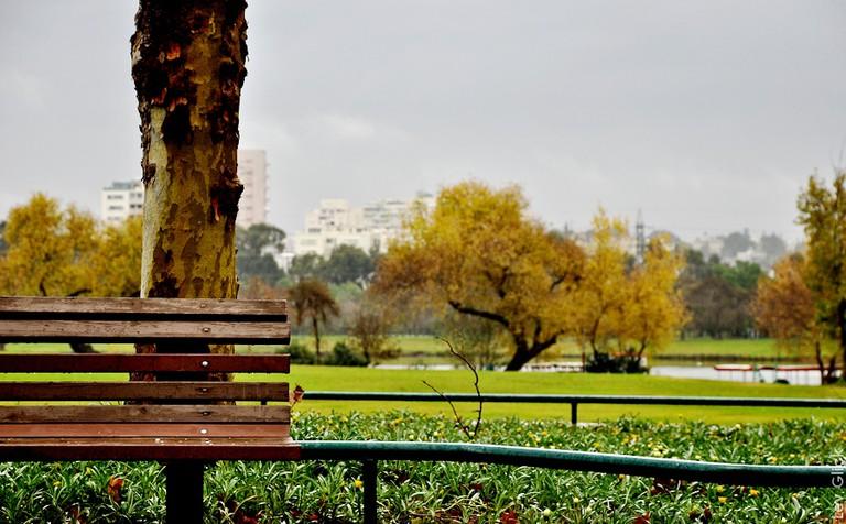 View in HaYarkon Park ǀ © Lev Glick/ Flickr