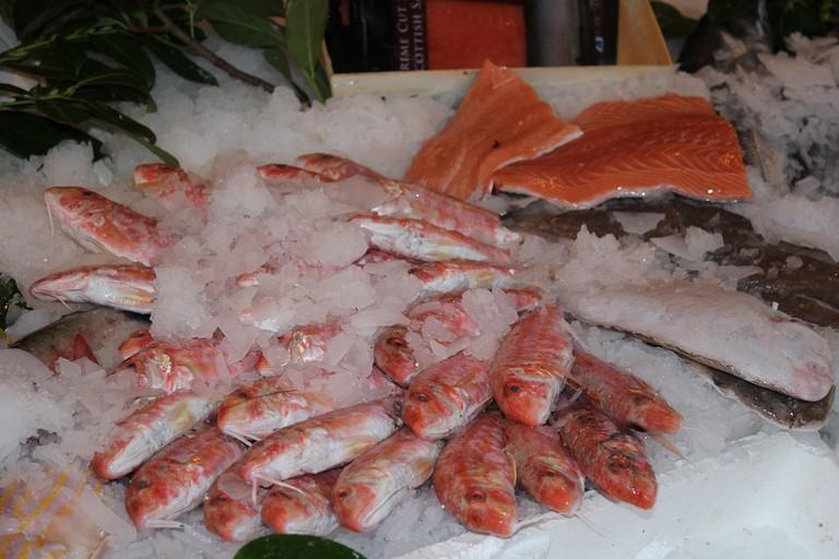 Pouters Fish | Courtesy Usha Rowan