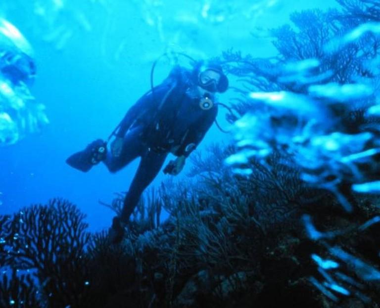 Scuba diver1 | © Matanya/WikiCommons