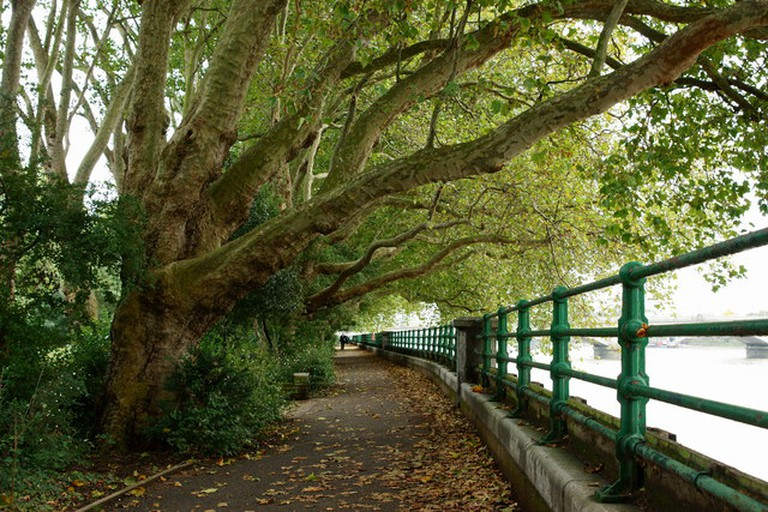 Along the Thames Path, Fulham | © Peter Trimming / Geograph