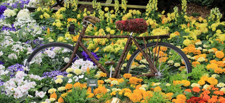 RHS Chelsea Flower Show   © Karen Roe/Flickr