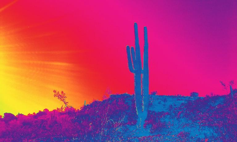 the hippie southwest | © Ms. Phoenix/Flickr