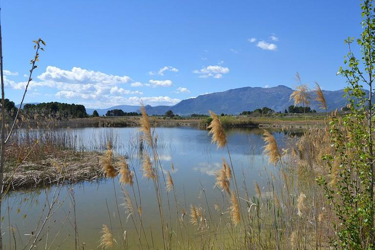 Lake Albufera in Valencia | © Joanbanjo / WikiCommons