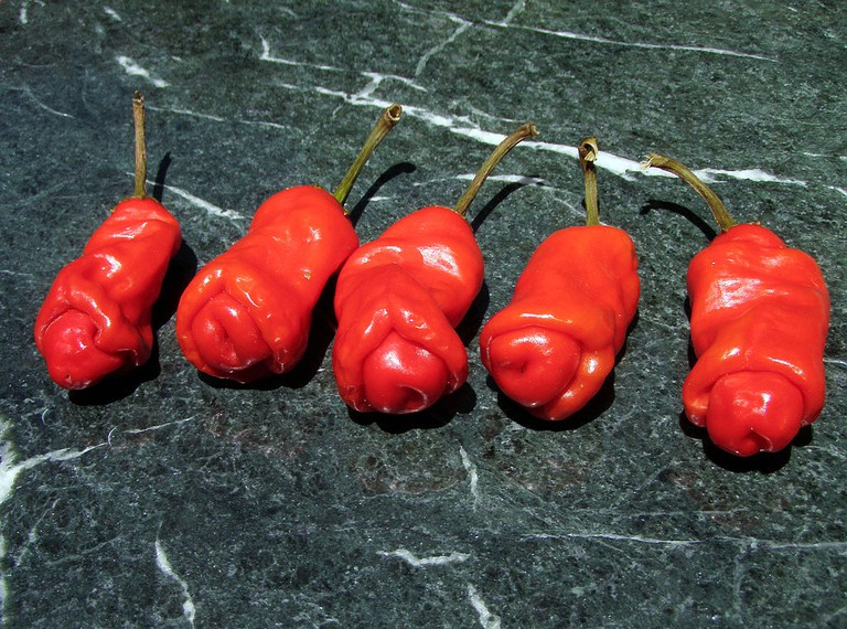 The Peter pepper | © Brocken Inaglory/WikiCommons