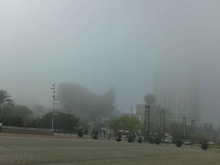 The Fog in Bcn | Courtesy of Elena Isaeva