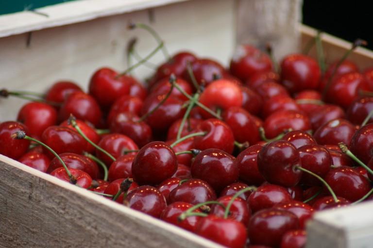 Cherries | © Quinn Dombrowski/Flickr