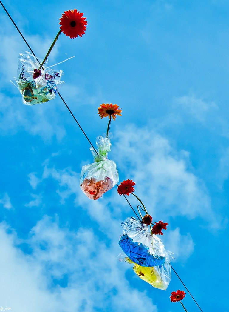 Flowers in the sky   © Joan Díaz Gallamí