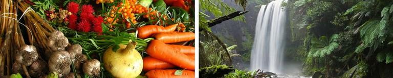Food © Elina Mark/Wikipedia / Waterfall © Diliff/Wikipedia