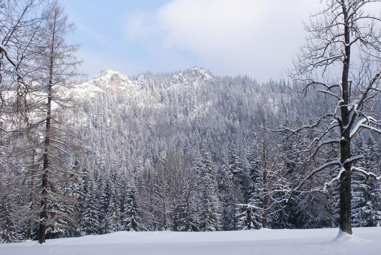 Skiing in Poland © Łukasz Hejnak / Flickr