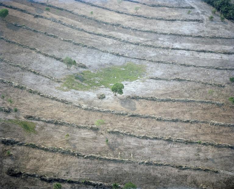 Deforestation, Tangará da Serra, Mato Grosso state, Brazil, 2015 | © Mustafah Abdulaziz / WWF-UK