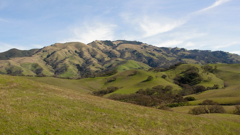 Looking up at Mount Diablo | © Miguel Vieira/Flickr